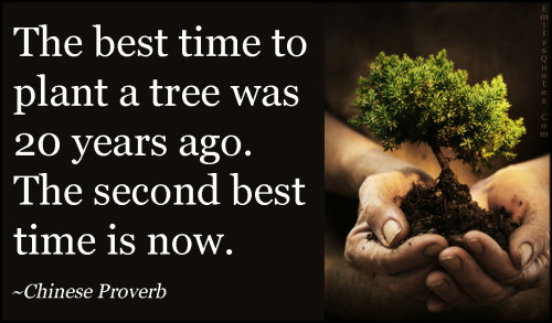 emilysquotes-com-time-plant-tree-present-nature-being-a-good-person-inspirational-chinese-proverb-500x293